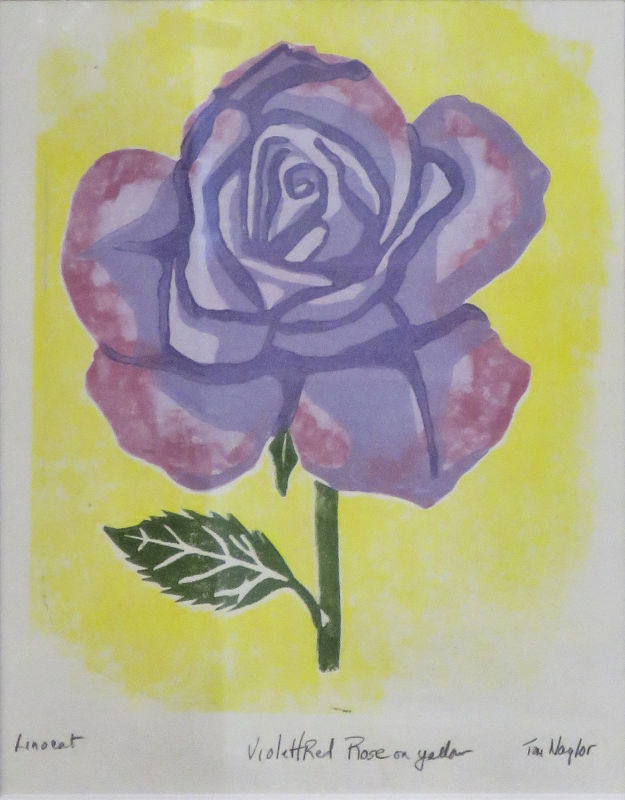 Red/Violet Rose on Yellow