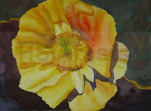 Yellow Flower 2000