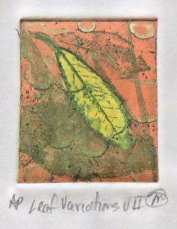 Leaf Variation VII