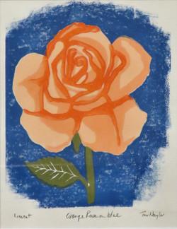 Orange Rose on Blue