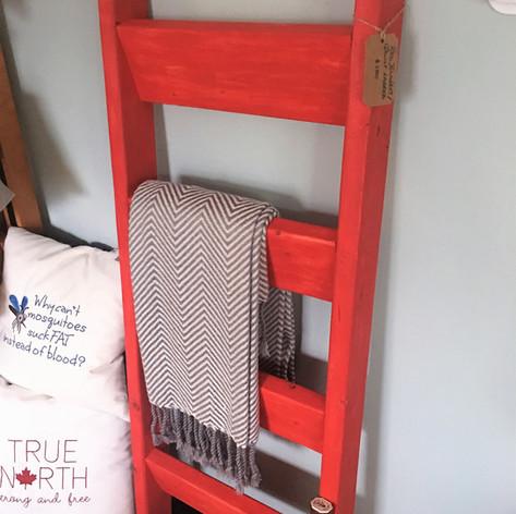Fort York Ladder.jpg