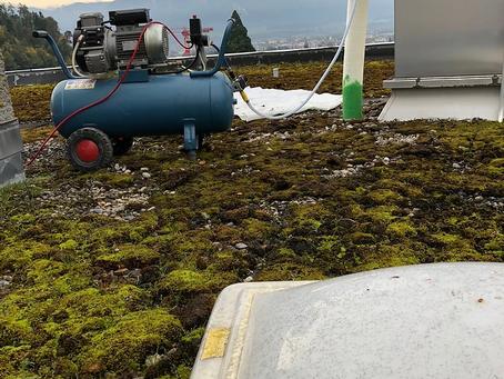 Sanierung einer Dachwasserleitung vom Flachdach bis Untergeschoss in Steffisburg (BE)