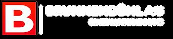 Logo_brunnenbühl_ag_1_weiss.png