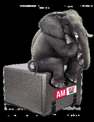 am 2021 elefant heat box rechts.png