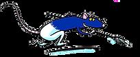 #kanalreinigung_rapperswil #kanalreinigung_jona #kanalreinigung_rueti #kanalreinigung_uznach #kanalreinigung_kaltbrunn #kanalreinigung_schmerikon #kanalreinigung_gommiswald #kanalreinigung_eschenbach #kanalreinigung_zuerich #kanalreinigung_meilen #kanalreinigung_staefa #kanalreinigung_maennedorf #kanalreinigung_feldbach #kanalreinigung_wollerau #kanalreinigung_freienbach #kanalreinigung_thalwil #kanalreinigung_lenzburg #kanalreinigung_oerlikon #kanalreinigung_mollis #kanalreinigung_niederurnen #kanalreinigung_glarus #kanalreinigung_weesen #kanalreinigung_ricken #kanalreinigung_wattwil #kanalreinigung_wil #kanalreinigung_schaffhausen #kanalreinigung_wetzikon #kanalreinigung_winterthur #kanalreinigung_glattbrugg #kanalreinigung_kloten #kanalreinigung_uster #kanalreinigung_wallisellen #kanalreinigung_duebendorf #kanalreinigung_zueri #kanalreinigung_horgen #kanalreinigung_waedenswil #kanalreinigung_hirzel #kanalreinigung_zug #kanalreinigung_zug #kanalreinigung_esslingen #kanalreinigung