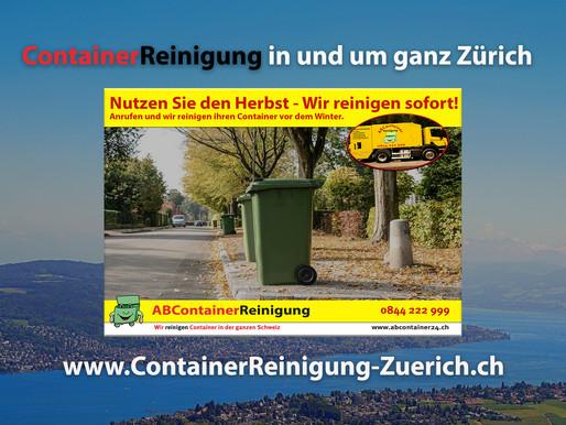 ContainerReinigung Zürich - Wir reinigen Ihre Container vor dem Winter