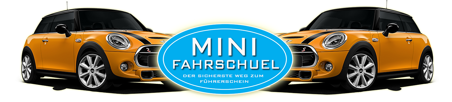 www.fahrpraxis.ch