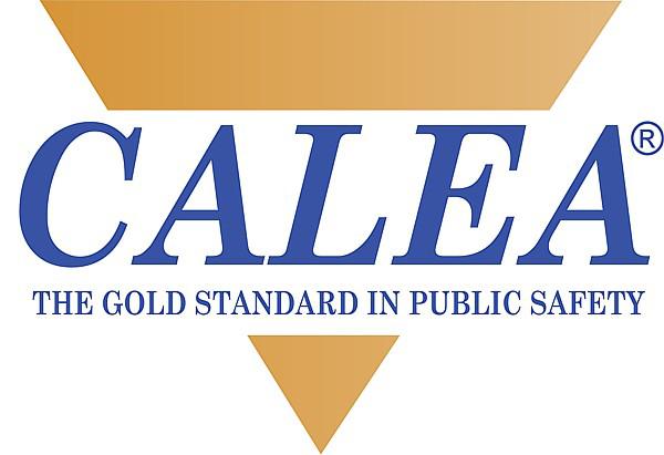 CALEAGoldStandard