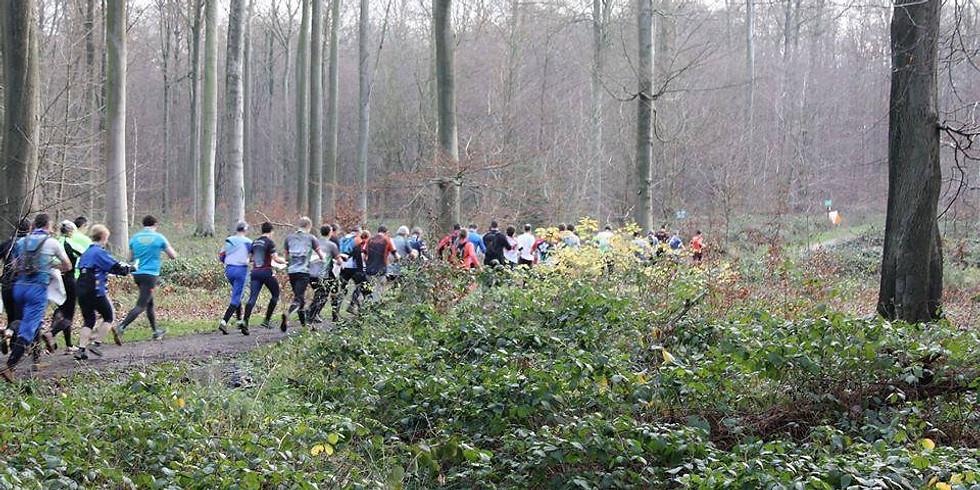 [Course Belgique] Ultra longues distances par équipes - 22/12/2019