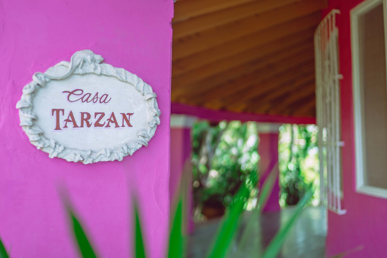 CASA TARZAN ROTULO.jpg