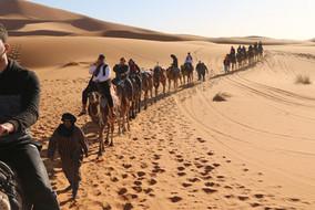 Sahara.jpeg