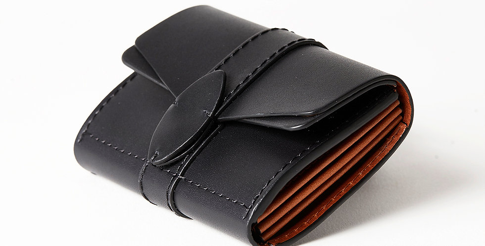 TRAVEL WALLET, black