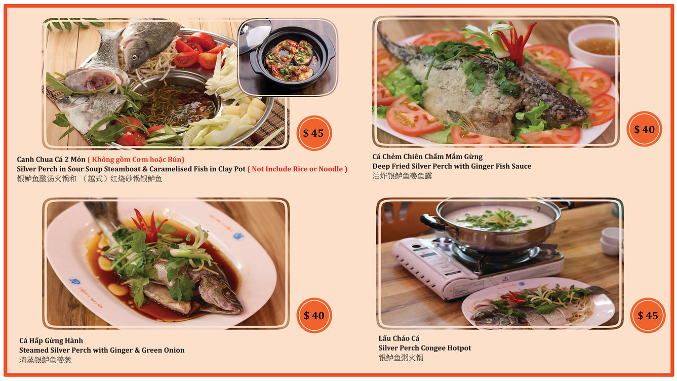 All Fish Dishes Banner.jpg