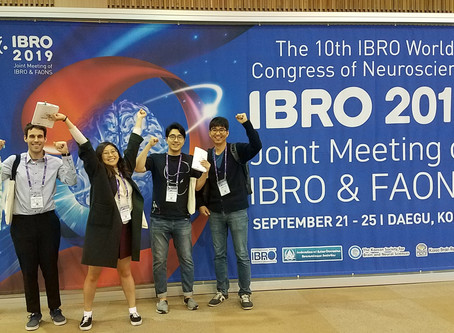 IBRO2019 in DAEGU (Sep 2019)
