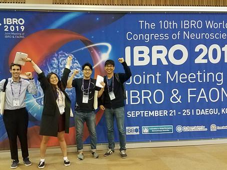 IBRO2019 in DAEGU (Sep 2019)