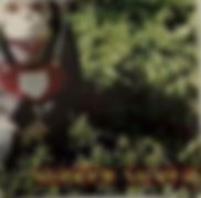 SUIREN SILVER 1.POINT 0 2.LOVE&HATE 3.Green Grass Bed 4.蜃気楼~MIRAGE~ 5.風車~KAZAGURUMA~ 6.枯れ木に花を咲かせましょう~REINCARNATION~ 7.Singer Song Rider