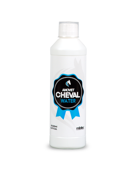 ANOVET® CHEVAL WATER 500 ml