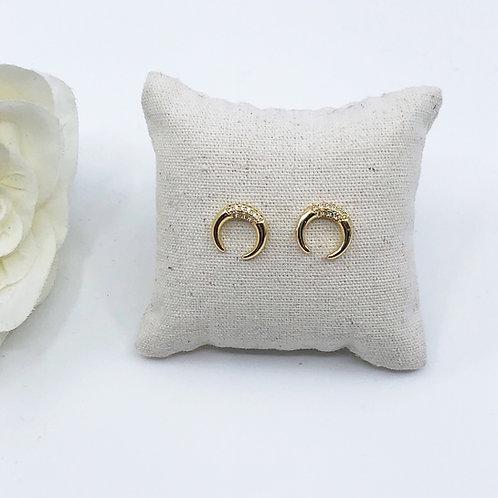 Shiny moon Earrings