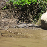 Cañón del Sumidero