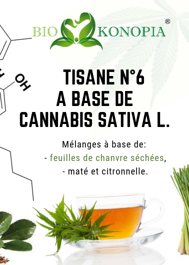 Tisane N°6 mélange à base de Cannabis Sativa L. Biokonopia avec maté et citronne