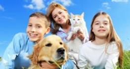 Pet Insurance Image No text.PNG