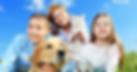 pet insurance, dog insurance, healthy pets, cat insurance, insurance for dogs, vet insurance, insurance pets
