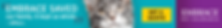 Embrace Cat Banner.PNG