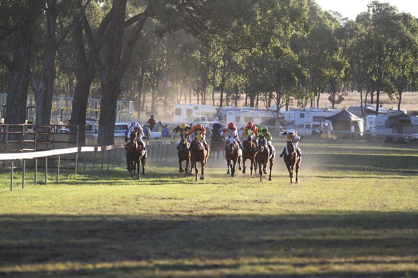 far away horses.jpg