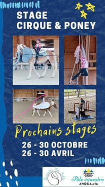 affiche poney cirque-page.jpg