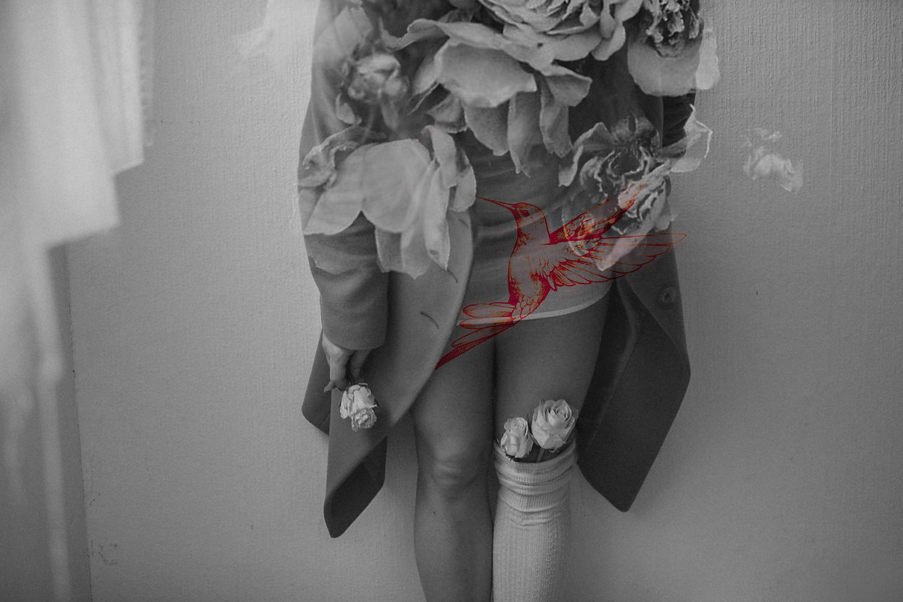 Slow-pink-bird-fashion_Ximeh-Art.jpg