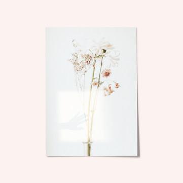 te mando flores