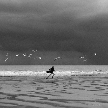 dancing-with-the-birds-BW_Ximeh-Photogra