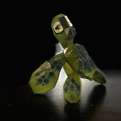 Small Colored Turtle