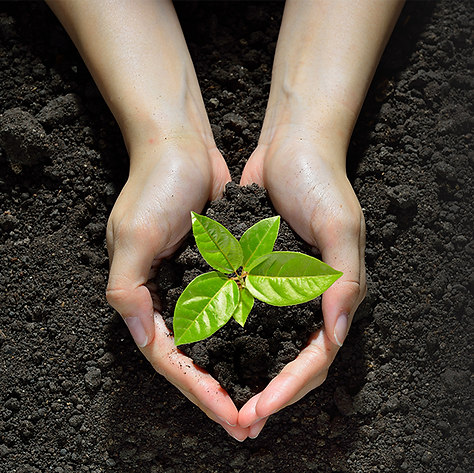 ISO 14001 Environmental Management Systems