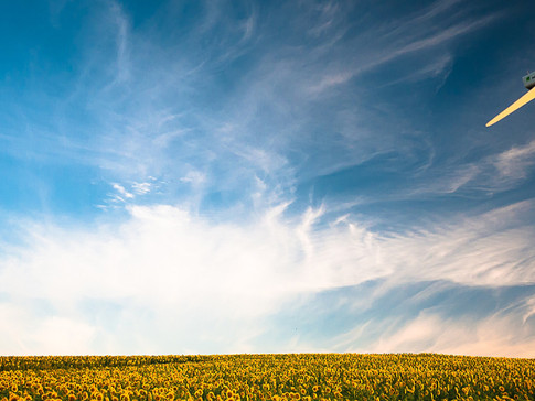 ISO Publishes New Standard to Manage the Impact of Climate Change