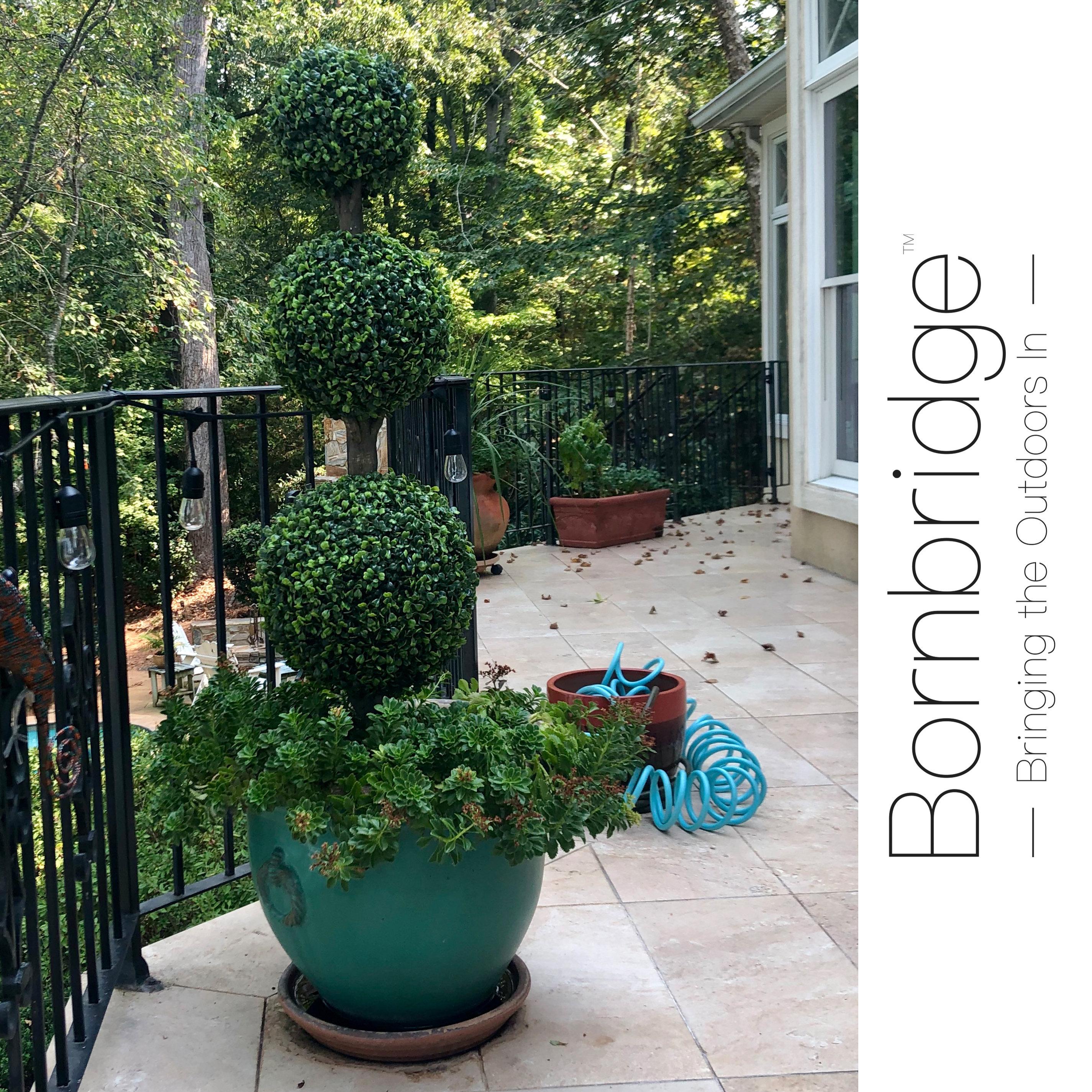 Artificial Boxwood Topiary Tree Bornbridge