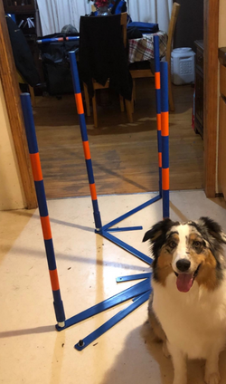 Lord Anson Agility Weave Set