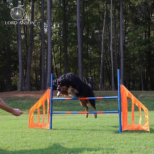 Dog Agility Jump Set Main View