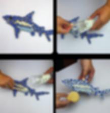 shark steps-01.png