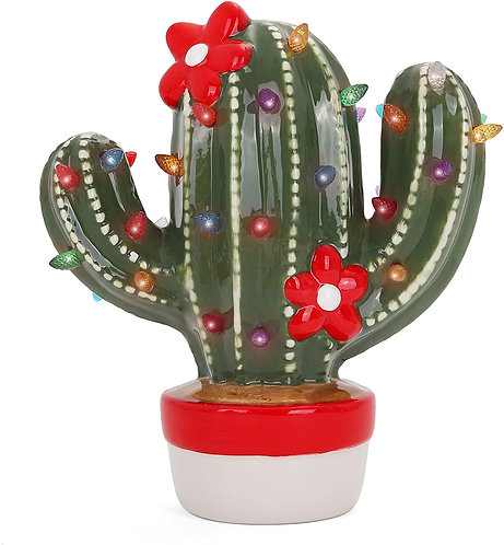 Front Christmas Cactus View