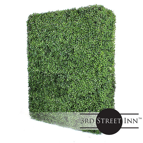 Artificial Boxwood Hedge Rectangle Main Image