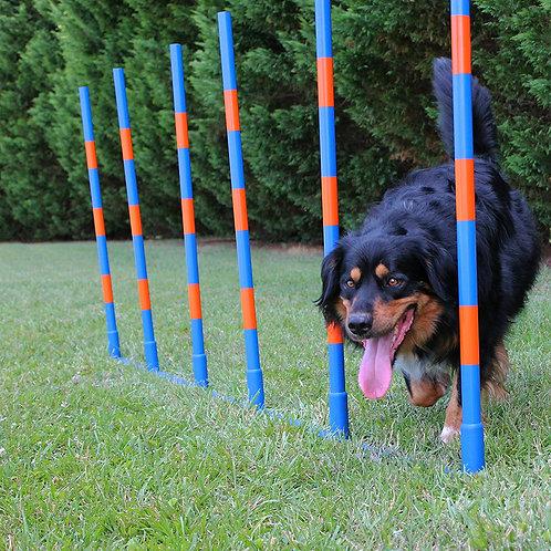 Dog Agility Weave Set