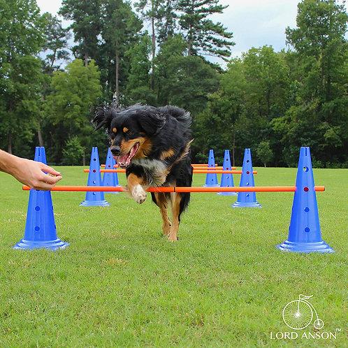 Dog Agility Hurdle Cone Set