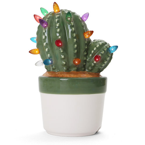 Cactus Succulent with Multicolored Lights