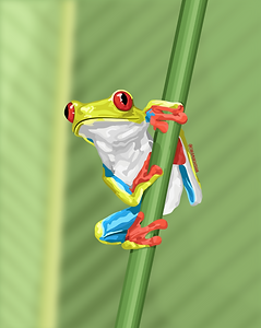 Froggie.png