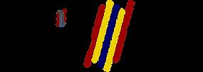 FINAL - ADVO logo - CLEAR.png