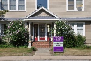 Would you Hire a Purple Realtor?