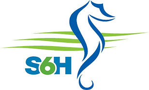 SHS  S6H Combined Logo jpg copy.jpg