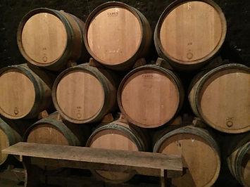 Wijnreizen Frankrijk | Bourgogne |Fete du Vin