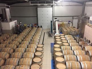 Wijnreizen Frankrijk | Bourgogne | Fete du Vin
